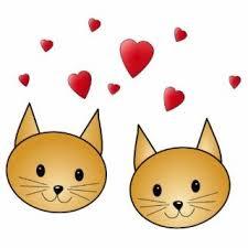 Рыжий кот: примета счастья