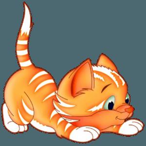 Как красиво назвать рыжего котенка?99