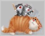Кошки. Тайны зрения.