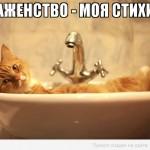 рыжий кот лежит в умывальнике