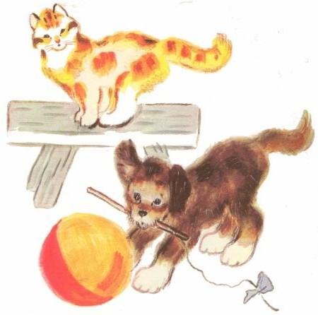кот рыжий и собака в цирке