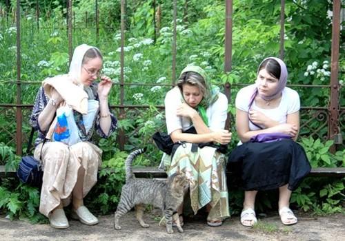 кот и паломники