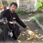кот бездомный рыжий и священник