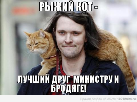 рыжий кот лучший друг мотиватор