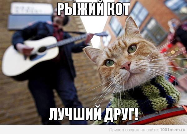 рыжий-кот-мотиватор-лучший-друг