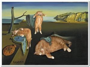 Кошки инопланетяне