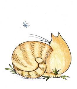 кошка-рисунок
