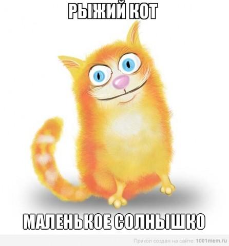 рыжий кот мурлыка, рыжая кошка от смерти спасла бабулю
