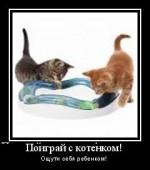 Как сделать своими руками игрушку для кошки?
