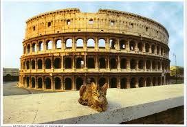 мифы о коте у римлян