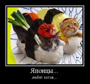 любят ли японцы котов, рыжий кот, кот черный и рыжий, два кота мурлыки
