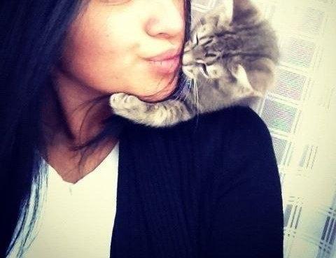 девушка-с-котенком