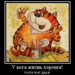 кот рыжий толстый мотиватор веселый смешной, поет душа у кота