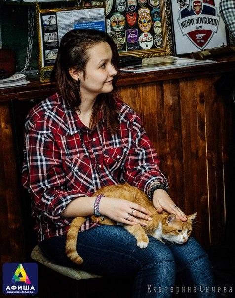 рыжий кот на коленях у девушки