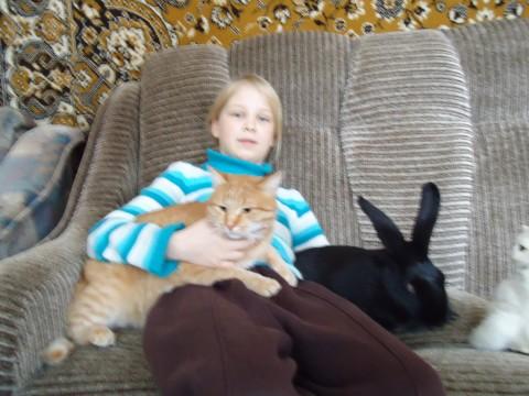 История про рыжего кота Масика.