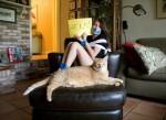 Смешной рассказ про рыжего кота Бакса.