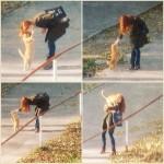 кот рыжий и девушка пикапер кот