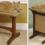 коты мебель