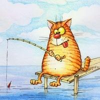 рыжий-кот-на -рыбалке