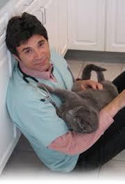кот и ветеринар