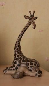 Интересные факты из жизни жирафа