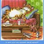 кот-рыжий-вялый-картинка-мотиватор