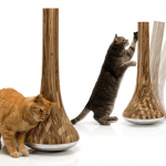 кошкам нужна когтеточка?