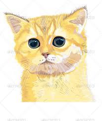 Кот гадит после кастрации