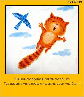 мотиватор рыжий кот летает в небе