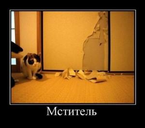 мотиватор мститель кот ободрал обои поцарапал агрессия