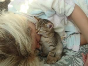 рыжий котенок с женщиной фото