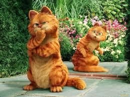 кот-и-кошка-рыжие