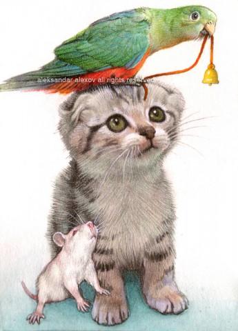 кот-попугай-мышонок
