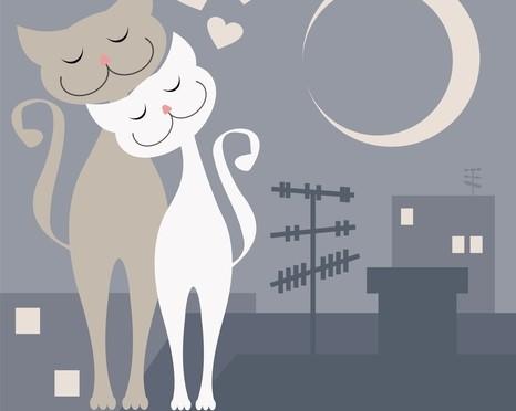 рисунок-кошки-любовь