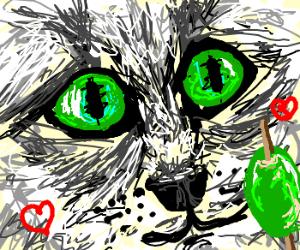 рисунок-кот-оливки