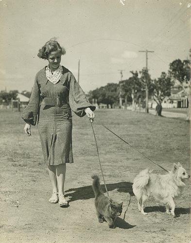 фото старое девушка выгуливает собаку и кота на поводке забавно