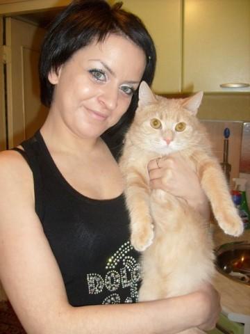 фото рыжий кот на руках у девушки