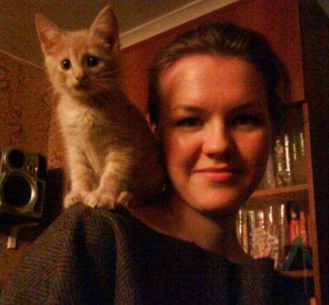 рыжий котенок на плече у девушки
