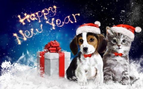 new year dog cat