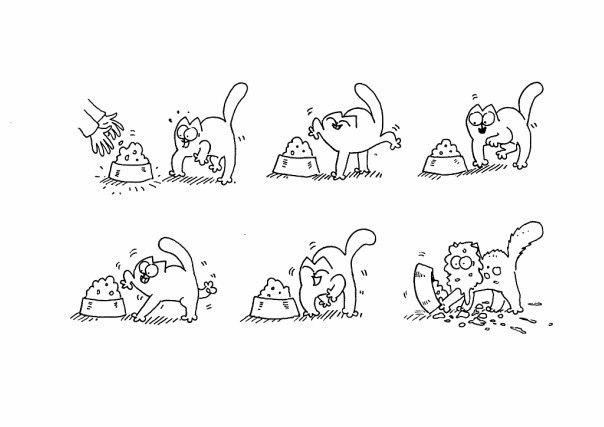 Мультики про черно белого кота