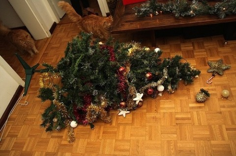 cat christmas tree fell