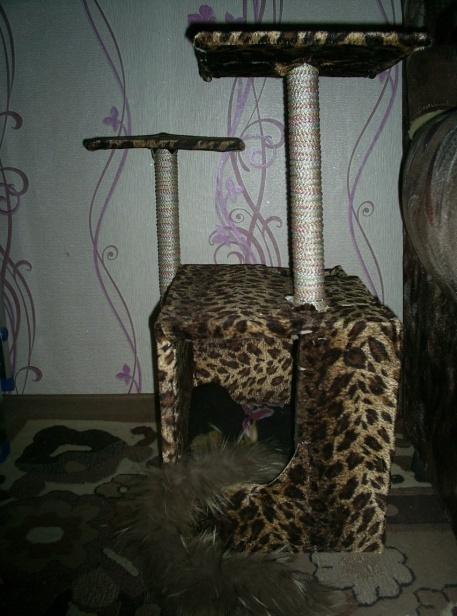 домик для кошки фото