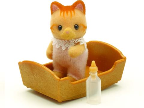 ухаживание за новорожденными котятами