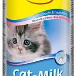 кормим котенка 1 месяц