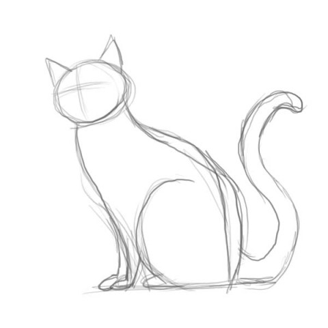 how-to-draw-a-cat2